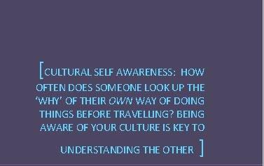 Cultural-self-awareness